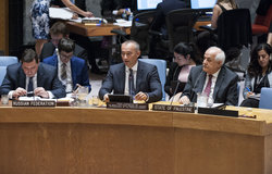 Nickolay Mladenov,UN Special Coordinator Briefs the Security Council. 25 July 2017. UN Photo/Kim Haughton