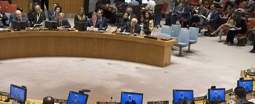 Nickolay Mladenov, UN Special Coordinator for the Middle East Peace Process addresses the Security Council meeting on the situation in the Middle East, including the Palestinian question. (UN Photo/Eskinder Debebe - 25 January 2018)